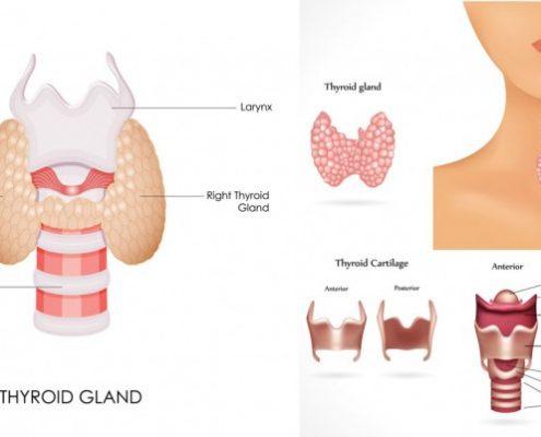 thyroid care symptoms of hyperthyrodism
