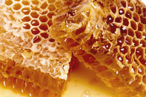 honey for wound healing